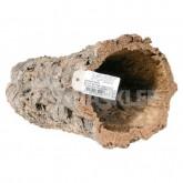 Tuba dębu korkowego 80cm