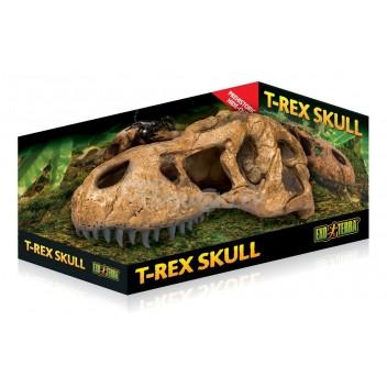 Czaszka tyranozaura T-REX EXO TERRA