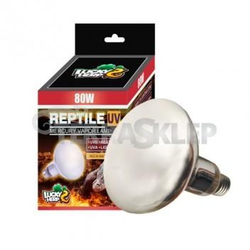 Żarówka Reptile UV 80W LUCKY HERP