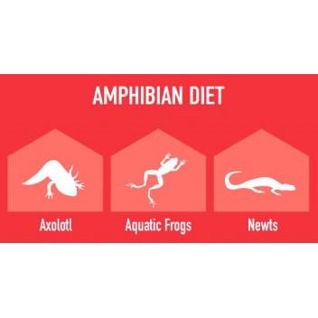 Pokarm dla żab, aksolotlów, traszek AMPHIBI GOLD 80g