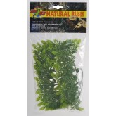 Malaysian Fern MEDIUM ZOO MED