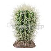 Kaktus Great Basin Hobby