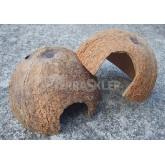 Domek kokosowy 1/2 orzecha, nieszczotkowany