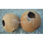 Domek kokosowy 1/2 orzecha, szczotkowany