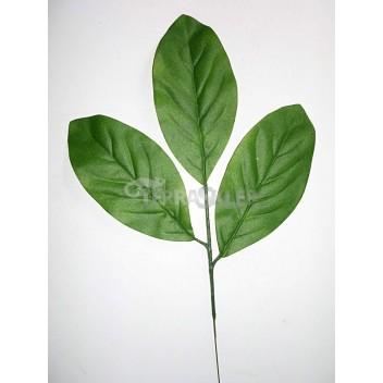 Migdałecznik liście 25cm