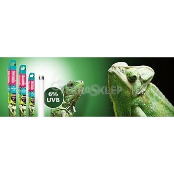 Świetlówka UVB 6% T8 Forest ARCADIA